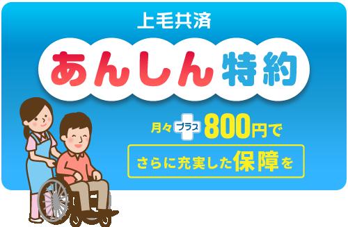 あんしん特約。月々の掛け金額に800円をプラスすることで、さらに充実した保障を受けることができます。